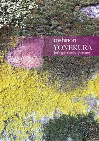 –gotta crush on..... volume. twelve– 2011