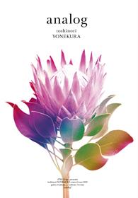 """sTYle72 inc. presents toshinori YONEKURA concert tour 2019 -gotta crush on..... volume. twenty- """"analog"""""""